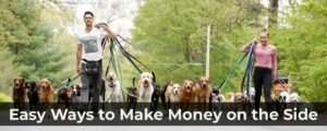 Read more about the article 25 Easy Ways to Make Money on the Side