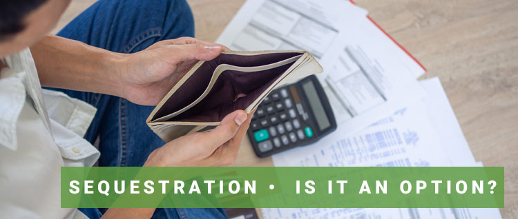 Read more about the article Sequestration •  Is It An Option?